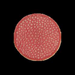 Sweet pink stingray leather