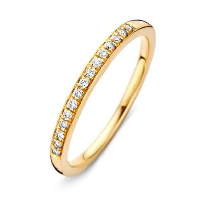 Geelgouden ring 0.09crt